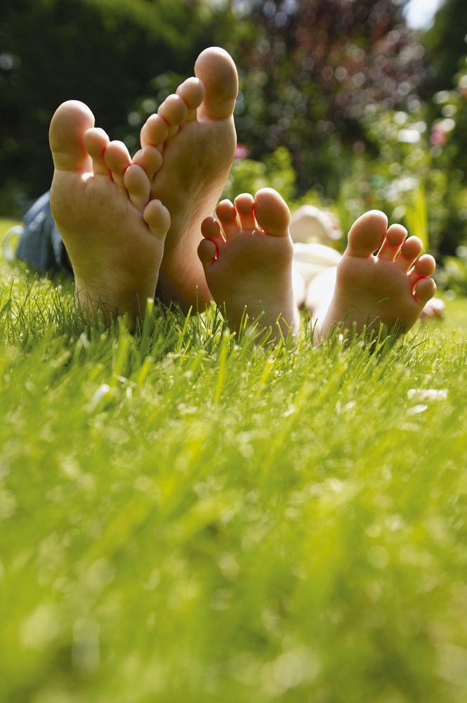 Rasen s en - Garten und leben ladbergen ...